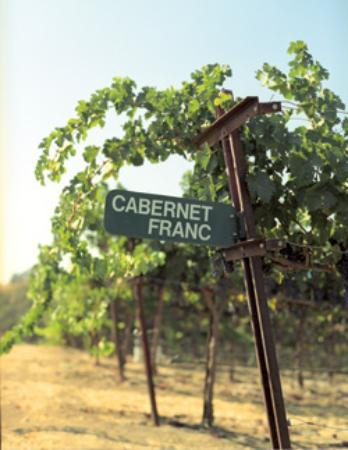 Foto de Niner Wine Estates