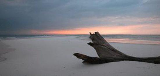 Johnson Beach Foto