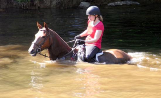 Off Piste Riding Photo