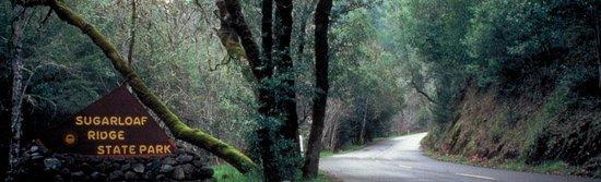 Sugarloaf Ridge State Park照片