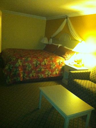 Best Western Harbour Inn & Suites: View of the bed (at night)