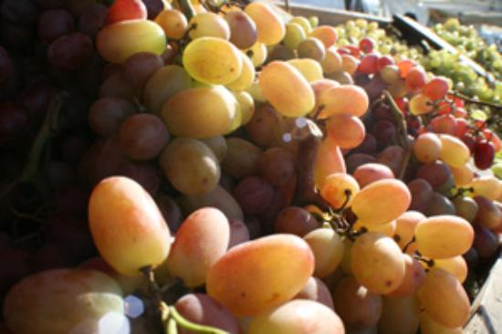 Foto de Berressa Farmers Market