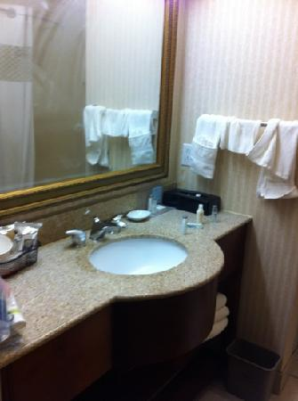 Hampton Inn Gallup-West : bathroom