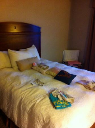 Hampton Inn Gallup-West : queen bed
