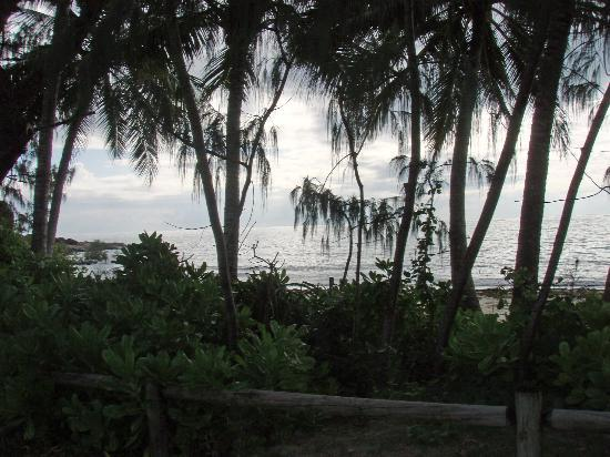 Port Douglas Surf Club Bar & Bistro: View at For Mile Beach from Esplanade
