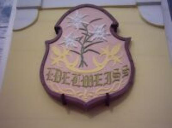 Edelweiss Photo