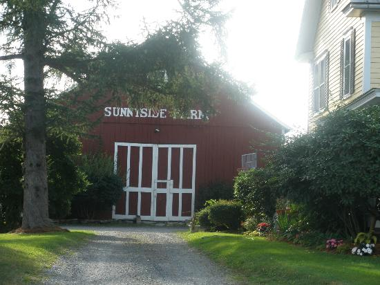 Sunnyside Farm Bed and Breakfast: Uncle Pat Brennan's Farm