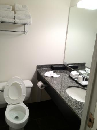 Travelodge Kingston LaSalle Hotel: restroom (washroom if you are Canadian)
