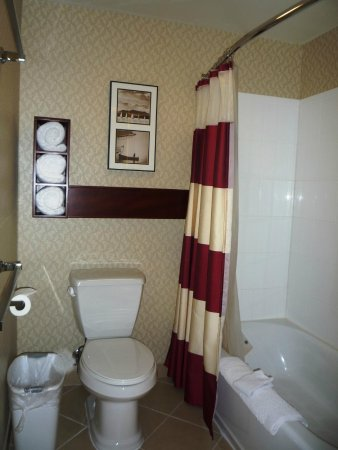 Residence Inn Moline Quad Cities: Bath