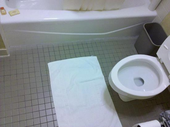 Days Inn Harrisburg North: clean floors and elongated toilet (thank you baby jesus :)