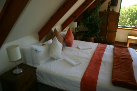 Lezard Bleu: Tree House room