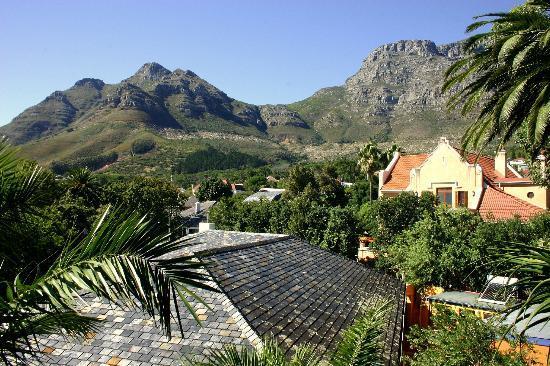 Lezard Bleu: View from walkway to Tree House