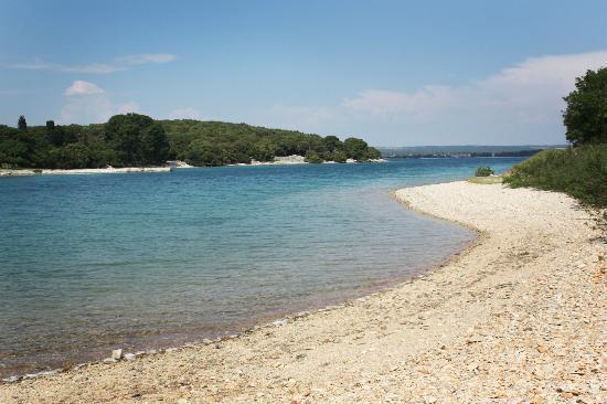 Alberghi isola foto di brijuni islands rovigno for Alberghi rovigno croazia