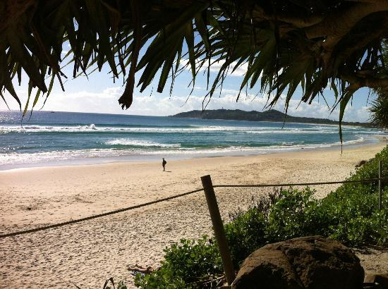 Bluewater on the Beach: Beneath the shady Pandanus tree