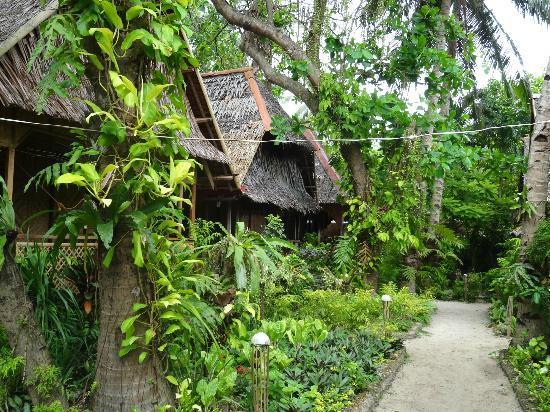 Melinda's Garden: Anlage