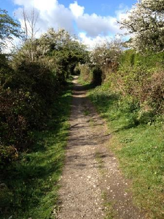 The Carlyon Bay: coastal path walk to Charlestown