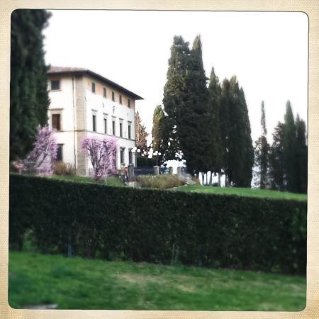 Villa Campestri Olive Oil Resort: Il risveglio della Primavera