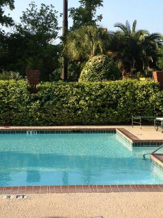 Hampton Inn Savannah -  I-95 North: Nice, simple pool