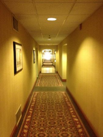 Hampton Inn Savannah -  I-95 North: Well lit hallway
