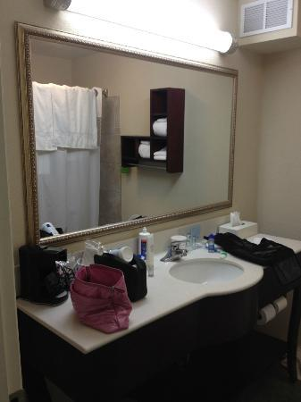 Hampton Inn Savannah -  I-95 North: Nice bathroom
