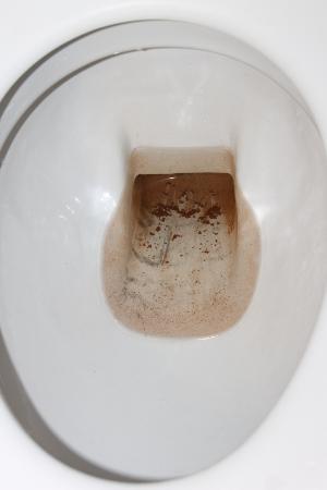 Zillertaler Weinstadl: Toilette
