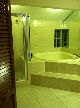 Legacy Vacation Resorts-Palm Coast : master bath
