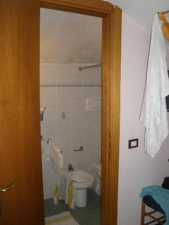 Hotel Venezia : Bathroom