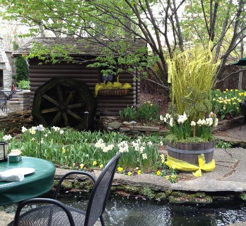 Jax Garden Mini Trout Stream