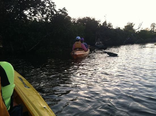 Captiva Kayak Company & Wildside Adventures : North Captiva