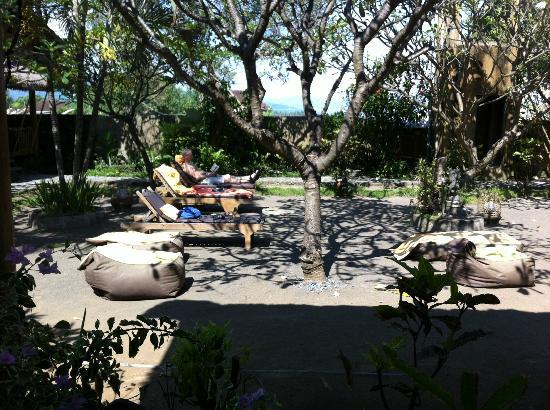Kubu Lalang: Nice grounds
