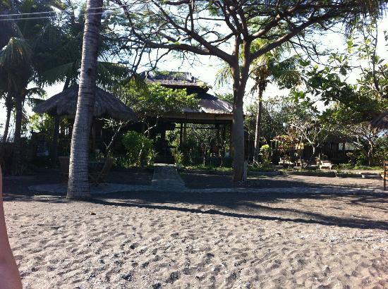 Kubu Lalang: Grounds