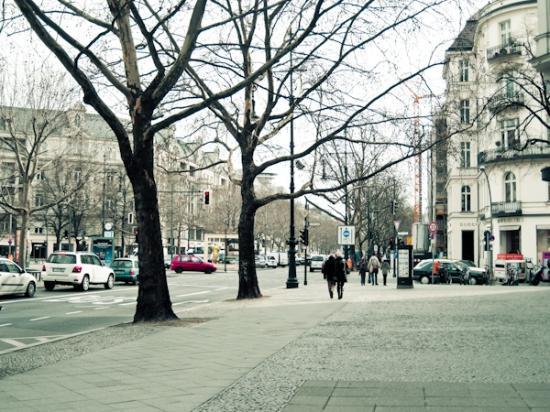 Hotel-Pension Bregenz: the major shopping strip near in the neighborhood