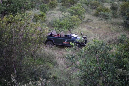 Motswari Private Game Reserve: View of the vehicle from the kopje at sunset