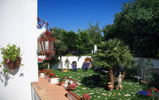 Mediterraneo: Our Garden