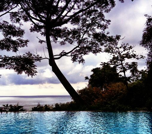 Makanda by the Sea : Infinity Pool
