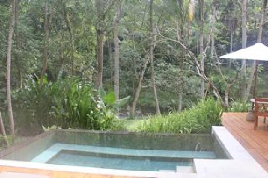 Four Seasons Resort Bali at Sayan : Plunge Pool de la Villa