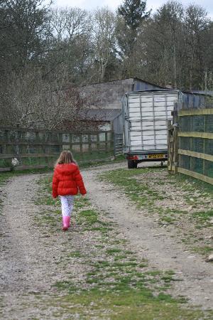 Come to Good Farm: on the farm