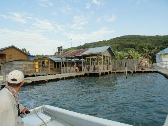 Mango Creek Lodge: Pick Up Point for fishing,Town of OakRidge, waterfront bar