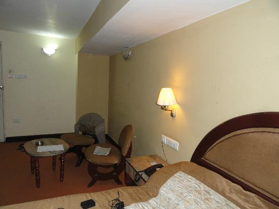 Hotel Anand Palace: Room facilities