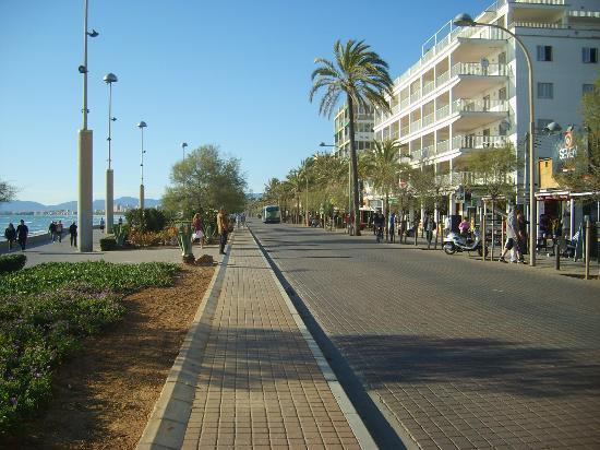 Palma Bay Club Resort : sea front