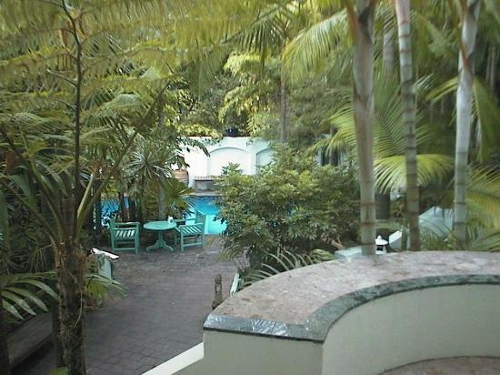 Rae's on Wategos: Pool View