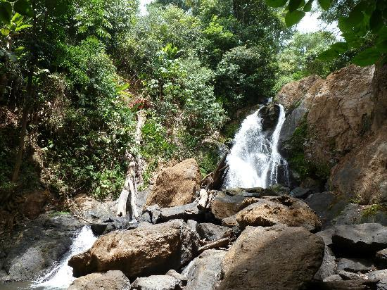 Campanario Biological Station: Waterfall