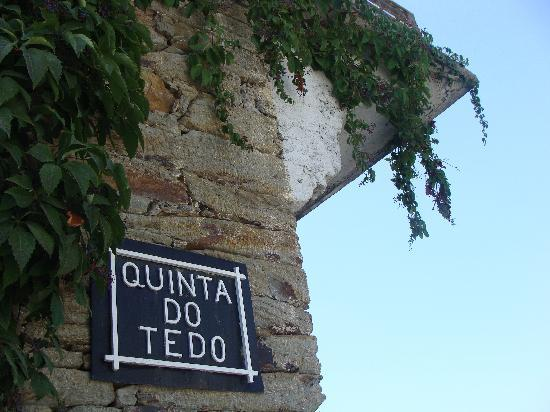 We await you at Quinta do Tedo, for tasting our internationally-acclaimed port, wine and olive o