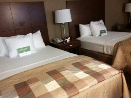 La Quinta Inn & Suites Canton: My grandson, and I hotel room, so neat and clean, so inviting!