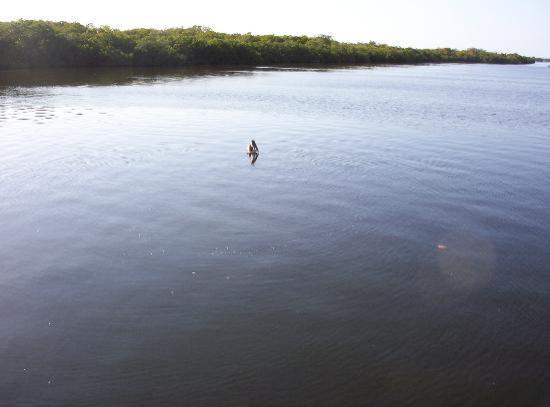 Cape Coral, Floride : Matlacha,Fl