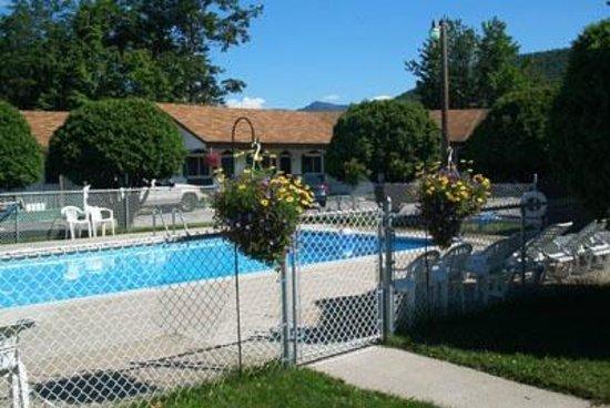 Moose Brook Motel : Great Pool