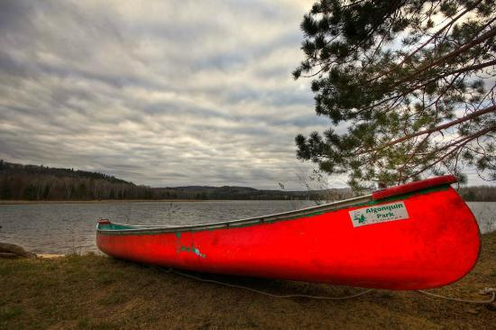 Red Deer Log Cabins and Campground: One of the canoes you can rent