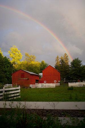 写真Handsome Brook Farm枚