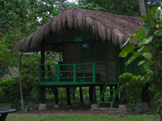 Nameri Eco Camp 사진