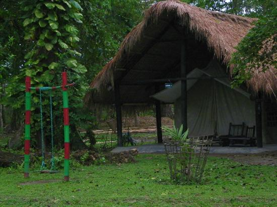 Nameri Eco Camp: PHOTO